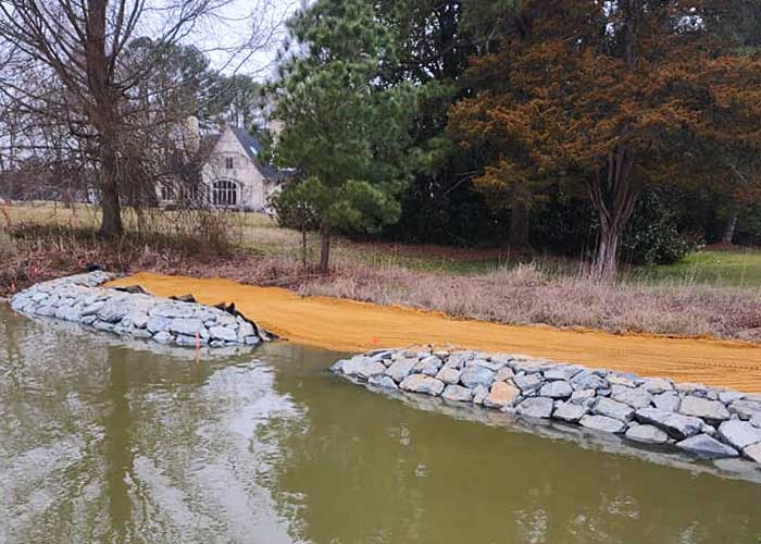 Living shoreline in Royal Oak, MD